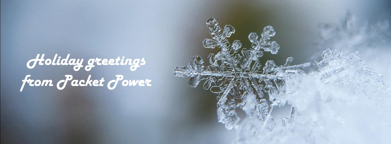 2020 Holiday blog snowflake with greeting V2